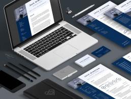 Display of Pro Resume 3 design template